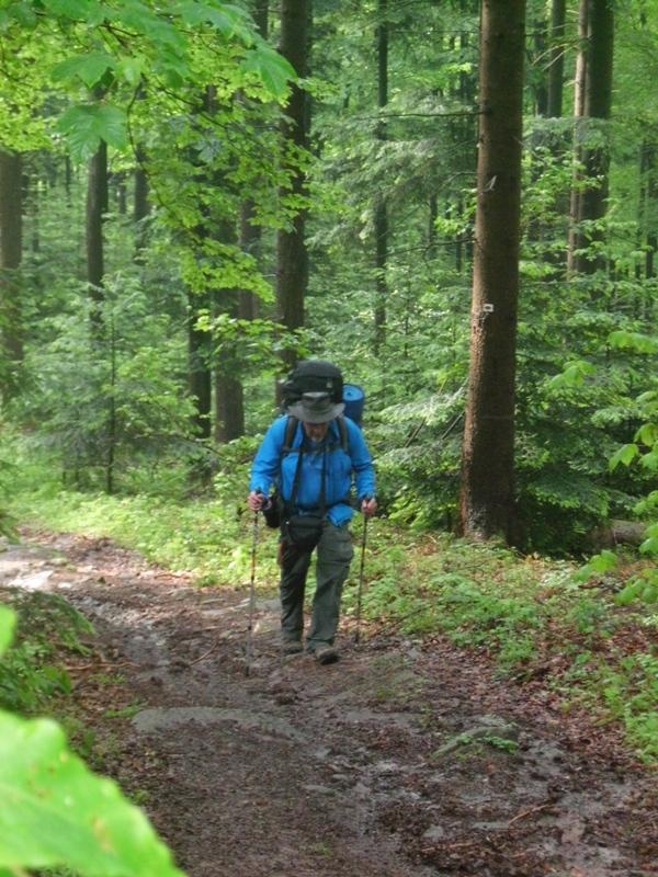 Der Schwarzwald Westweg